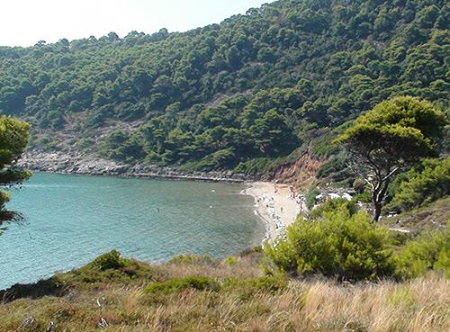 Lopud - la plage Sunj